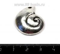 Подвеска Ракушка спираль 25*22 мм, цвет старое серебро 1 штука 055856 - 99 бусин