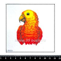 Шаблон для броши Попугай красно-жёлтый, фетр Корея Премиум, толщина 1,25 мм, размер 10*10 см 063017 - 99 бусин