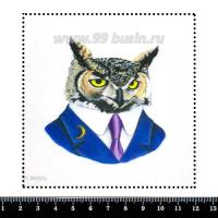 Шаблон для броши Портрет совы в костюме, фетр Корея Премиум, толщина 1,25 мм, размер 10*10 см 063026 - 99 бусин