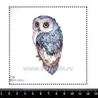 Шаблон для броши Голубая сова, фетр Корея Премиум, толщина 1,25 мм, размер 10*10 см 063035 - 99 бусин