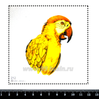 Шаблон для броши Жёлтый попугай, фетр Корея Премиум, толщина 1,25 мм, размер 10*10 см 063045 - 99 бусин