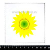 Шаблон для броши Молодой подсолнух, фетр Корея Премиум, толщина 1,25 мм, размер 10*10 см 063063 - 99 бусин