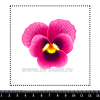 Шаблон для броши Анютины глазки ярко-розовый, фетр Корея Премиум, толщина 1,25 мм, размер 10*10 см 063073 - 99 бусин
