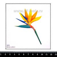 Шаблон для броши Стрелиция жёлто-синяя, фетр Корея Премиум, толщина 1,25 мм, размер 10*10 см 063089 - 99 бусин
