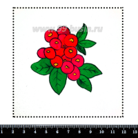 Шаблон для броши Рябинка, фетр Корея Премиум, толщина 1,25 мм, размер 10*10 см 063097 - 99 бусин