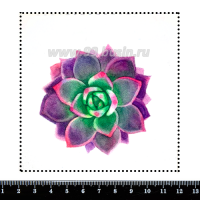 Шаблон для броши Фиолетовый суккулент 439, фетр Корея Премиум, толщина 1,25 мм, размер 10*10 см 063102 - 99 бусин