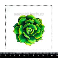 Шаблон для броши Суккулент 442, фетр Корея Премиум, толщина 1,25 мм, размер 10*10 см 063105 - 99 бусин