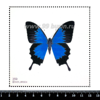 Шаблон для броши Бабочка голубые тона, фетр Корея Премиум, толщина 1,25 мм, размер 10*10 см 063148 - 99 бусин