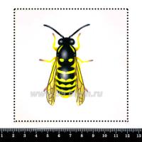 Шаблон для броши Оса, фетр Корея Премиум, толщина 1,25 мм, размер 10*10 см 063155 - 99 бусин
