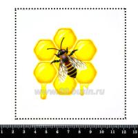 Шаблон для броши Оса на сотах, фетр Корея Премиум, толщина 1,25 мм, размер 10*10 см 063156 - 99 бусин