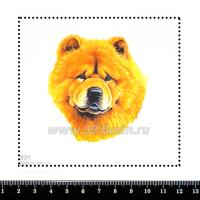 Шаблон для броши Чау-чау 831, фетр Корея Премиум, толщина 1,25 мм, размер 10*10 см 063247 - 99 бусин