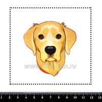 Шаблон для броши Ретривер в красном ошейнике 922, фетр Корея Премиум, толщина 1,25 мм, размер 10*10 см 063257 - 99 бусин