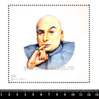 Шаблон для броши Доктор Зло 636, фетр Корея Премиум, толщина 1,25 мм, размер 10*10 см 063268 - 99 бусин
