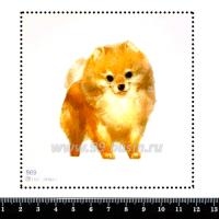 Шаблон для броши Шпиц щеночек, фетр Корея Премиум, толщина 1,25 мм, размер 10*10 см 063284 - 99 бусин