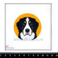 Шаблон для броши Бернский Зенненхунд на оранжевом фоне, фетр Корея Премиум, толщина 1,25 мм, размер 10*10 см 063300 - 99 бусин