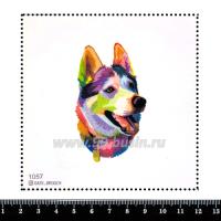 Шаблон для броши Хаски красками, фетр Корея Премиум, толщина 1,25 мм, размер 10*10 см 063302 - 99 бусин