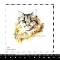 Шаблон для броши Портрет кота 021, фетр Корея Премиум, толщина 1,25 мм, размер 10*10 см 063401 - 99 бусин