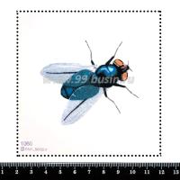 Шаблон для броши Муха 1060, фетр Корея Премиум, толщина 1,25 мм, размер 10*10 см 063924 - 99 бусин