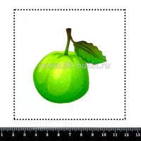 Шаблон для броши Гуава, фетр Корея Премиум, толщина 1,25 мм, размер 10*10 см 063933 - 99 бусин