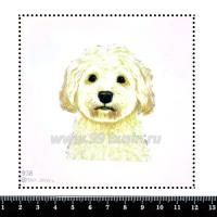 Шаблон для броши Бишон 938, фетр Корея Премиум, толщина 1,25 мм, размер 10*10 см 063982 - 99 бусин