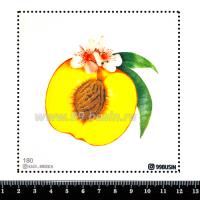 Шаблон для броши Нектарин, фетр Корея Премиум, толщина 1,25 мм, размер 10*10 см 064357 - 99 бусин