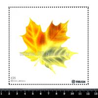 Шаблон для броши Кленовый лист, фетр Корея Премиум, толщина 1,25 мм, размер 10*10 см 064435 - 99 бусин