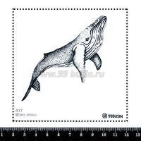 Шаблон для броши Кит, фетр Корея Премиум, толщина 1,25 мм, размер 10*10 см 064443 - 99 бусин